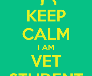 keep calm, series, and vet image