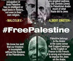 free palestine, israel, and pray for gaza image