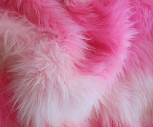pink, fur, and fluffy image