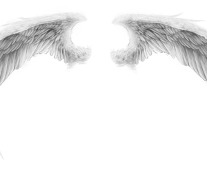 places and wings image