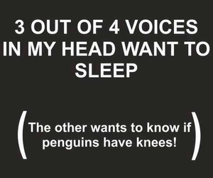 funny, voice, and penguin image