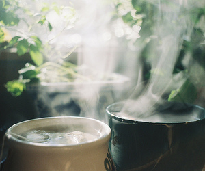 tea, coffee, and Hot image