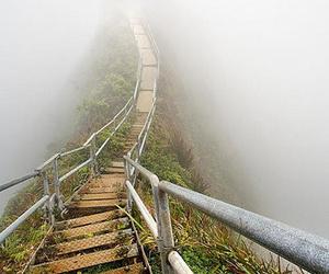 bridge, fog, and black and white image
