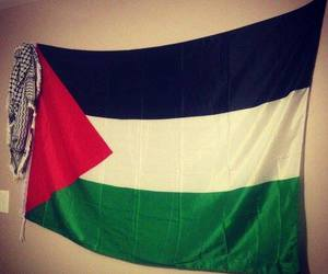 flag, Gaza, and palestine image