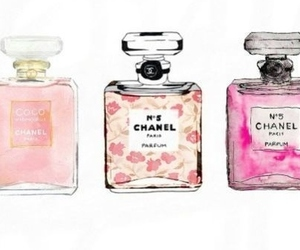 chanel, perfume, and cute image