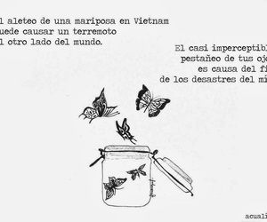 frases, mariposa, and desastre image