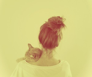 cat and sweet image