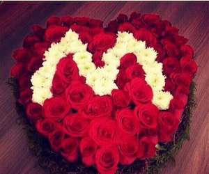 love, M, and rose image