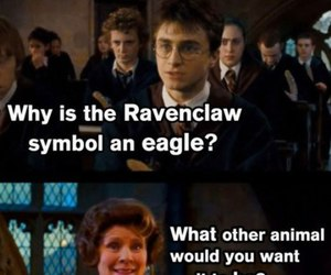 harry potter, funny, and ravenclaw image