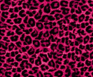 pink, wallpaper, and animal print image
