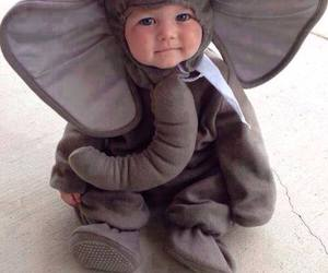 baby, cute, and elephant image