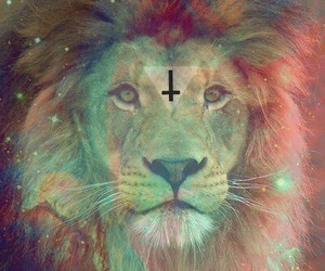 galaxy and lion image