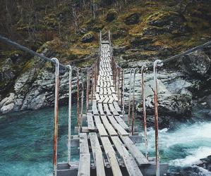 bridge, beautiful, and nature image