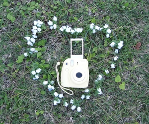 flowers, instax, and polaroid image