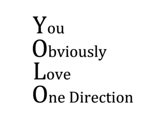 yolo, obviously, and 1d image