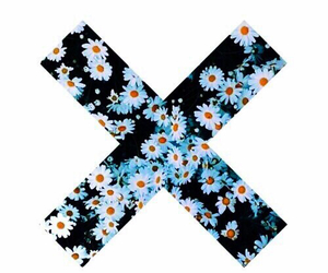 flowers, x, and daisy image