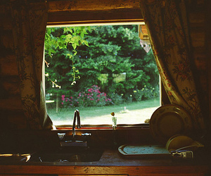 kitchen, window, and photography image