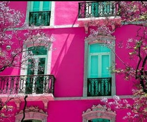 flowers, pink, and trees image