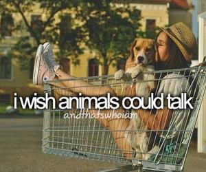 animal, talk, and wish image