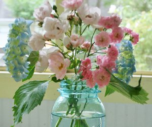 bottle, flowers, and spring image