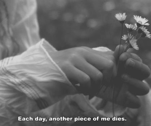 sad, flowers, and black and white image