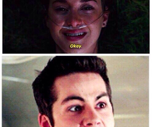 teen wolf, dylan o'brien, and okay image