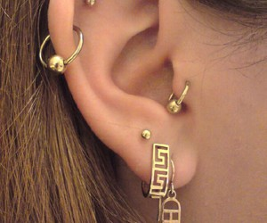 ears, golden, and gold image