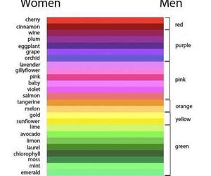 colors, woman, and men image