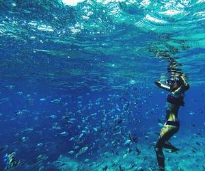 fish, ocean, and sea image