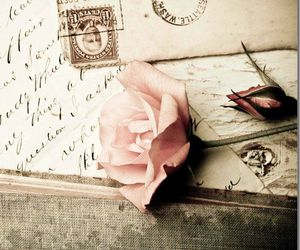 vintage, rose, and Letter image