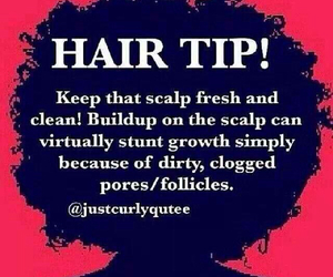 hair tip, healthy hair care, and all hair types image