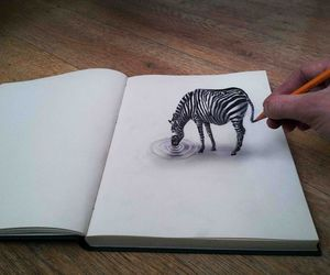 drawing, art, and zebra image