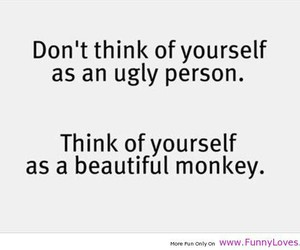 funny, beautiful, and monkey image