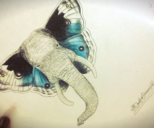 butterfly, color, and drawing image