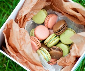 macaroons, food, and dessert image