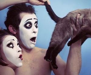 black, cat, and haha image