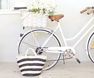 white, flowers, and bicycle image