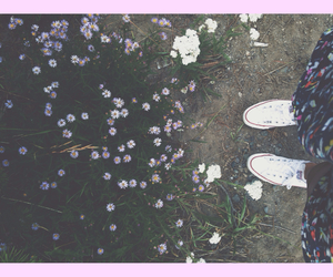flowers, hipster, and tumblr image