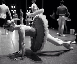ballet, dance, and pointes image