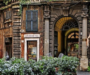 italy, rome, and barber image