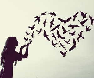 birds, heart, and girl image