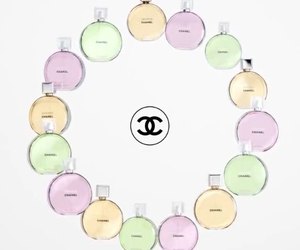 black&white, chanel, and colours image