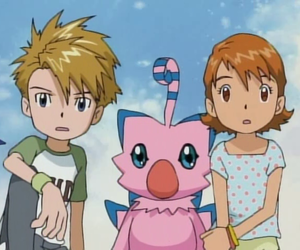digimon and sorato image