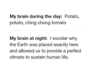 funny, night, and brain image