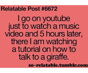 youtube, funny, and giraffe image
