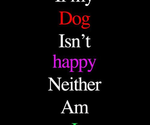 dog quote and a place to love dogs image