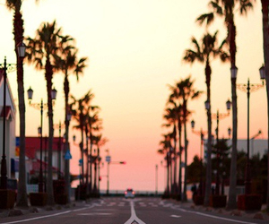 summer, sunset, and california image