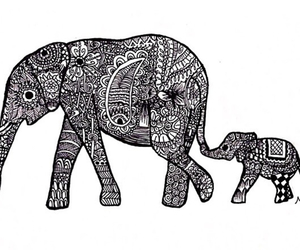 drawing, elephant, and hipster image