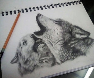wolf, drawing, and art image
