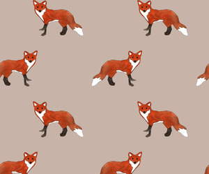 fox and pattern image